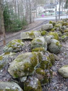 Tahmelassa sijaitsevan pulteriaidan jäännökset ovat vuodesta 2008 olleet Moreenin hoidossa.